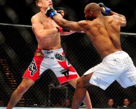 MMA: comme un oiseau en cage